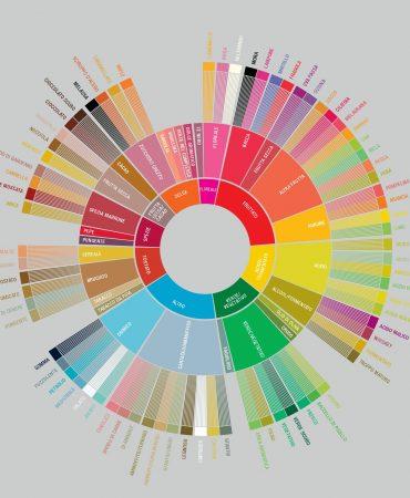 Flavour wheel ITA